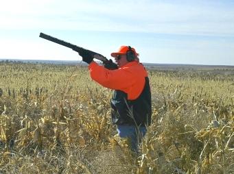 Megkezdődött a vadászati főidény, erdőlátogatási tilalmat rendeltek el Somogyban