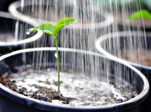 Ingyenes lesz a víz a gazdáknak az öntözéshez
