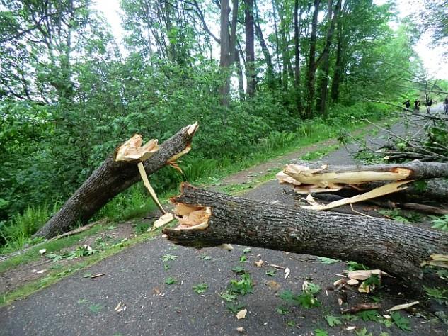 Önkéntesek is segítik a károk elhárítását – 90 kilométeres szél várható