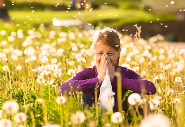 Táplálék és pollen keresztallergiák
