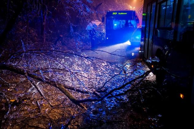 Hatalmas károkat okozott az ónos eső