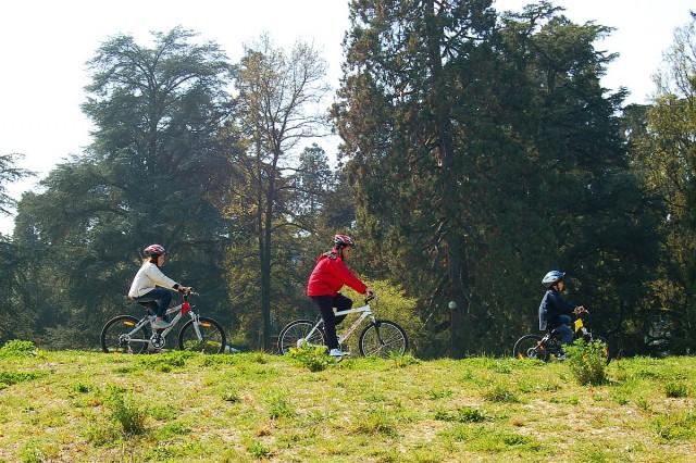 Újabb kerékpárúttal bővült a régiónk, teljes lett a hálózat