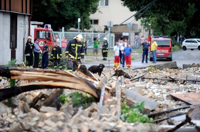 Romok ellenőrzése Budapest X. kerületében, keresőkutyával. Fotó: Mihádák Zoltán, MTI