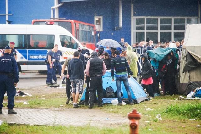 Rendőrök a zöldhatáron elfogott menekültek számára kialakított hangárnál. Fotó: Balogh Zoltán, MTI