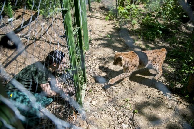 Májusban már mehet a pécsi állatkertbe