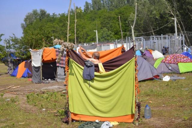 Egy férfi tisztálkodik a migránsok táborában Horgosnál, a szerb-magyar határ közelében 2016. május 27-én. Fotó: Molnár Edvárd, MTI