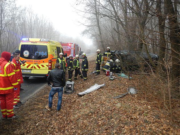 Fának egy csapódott jármű a Vas megyei Keléd és Jánosháza között, ketten súlyosan megsérültek.