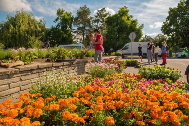 Villányi diákok ültettek virágot Harkányszerte