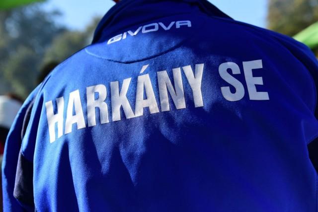 Két góllal győzte le Harkány a PEAC együttesét
