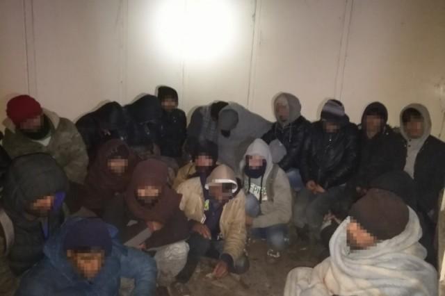 Diósviszlónál fogtak 39 migránst