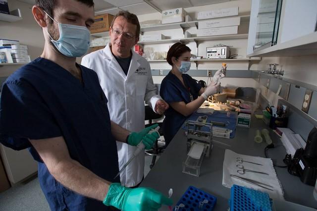 Mellékhatástól mentes fájdalomcsillapítón dolgoznak a PTE tudósai