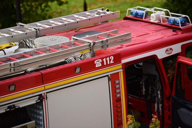 Kigyulladt tuják, garázs és erkély mellett balesetek is adtak munkát a tűzoltóknak
