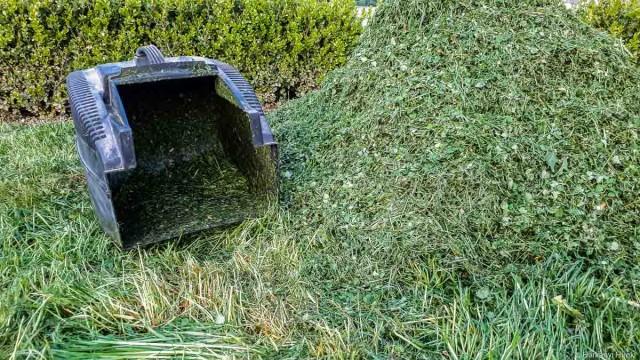 Ideje összeszedni a kerti hulladékot, szerdán viszik el