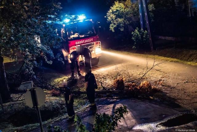 Harkányban leszakadt ággal, Szalántán leszerelt gázórával zárták a tűzoltók a hetet