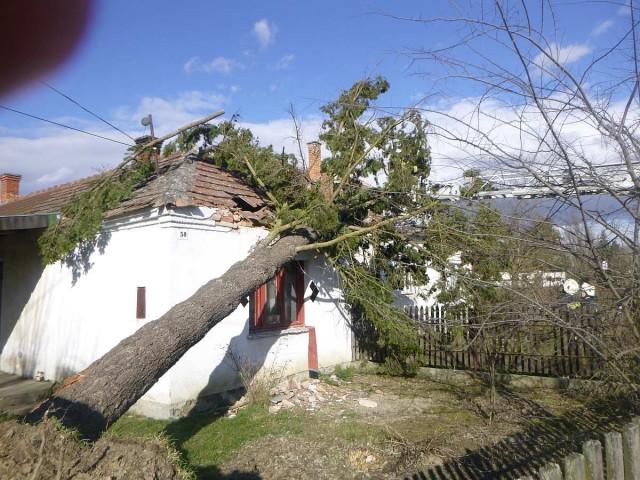 Viharkárok – Baranya megúszta, de a szomszédos Somogy vezet