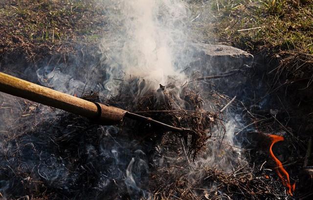 Betiltják az avarégetés Magyarországon