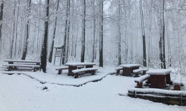 Tizenöt centi hó van a Mecsekben