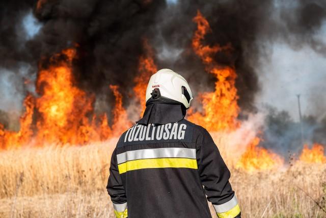 Tűz Zaláta határában